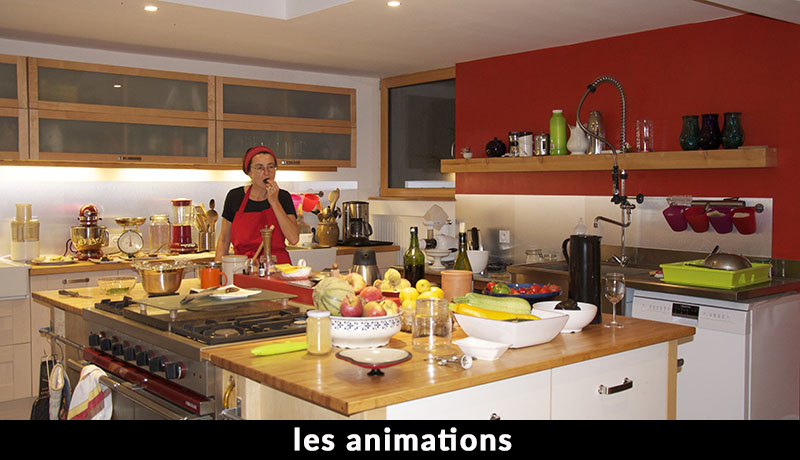 anachronique les animations